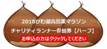 takashima-marathon-half